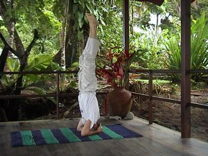 SHIRSHASANA1